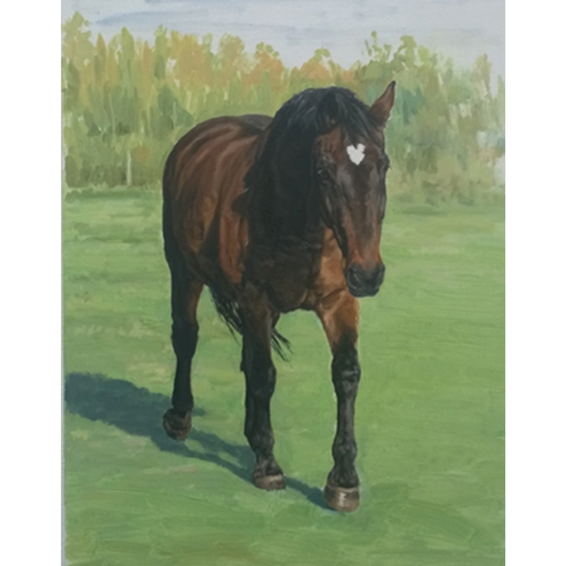 Monica_Brufton_Horse_Portrait_Commission_Matty