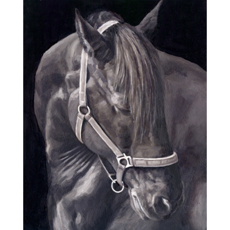 Monica_Brufton_Horse_Portrait_Commission_Sky
